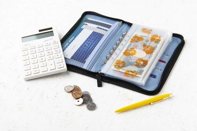 大人のおしゃれ手帖特別編集 お金が貯まるポーチつき 家計見直しBOOK